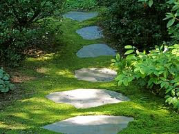 path stone (1)
