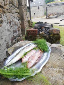 fish on platter