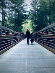 walking on a bridge in the woods during covid